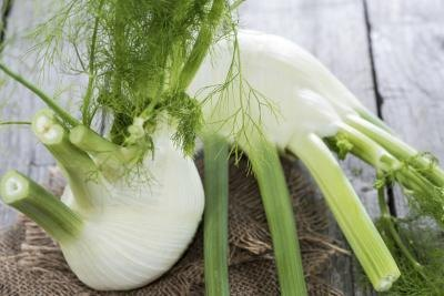Substitutions for Fennel