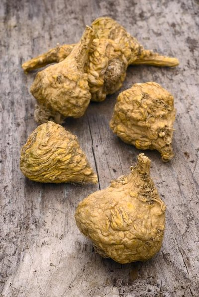 Maca & Weight Loss
