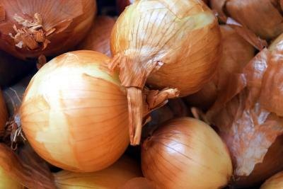 What Are the Health Benefits of Onion Powder?