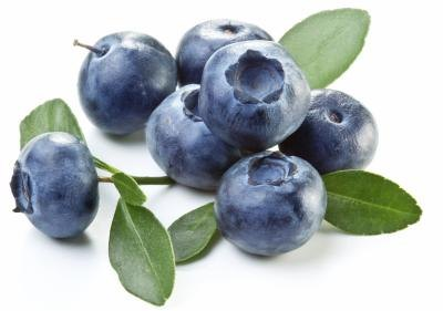 Blueberries and Urinary Tract Infections