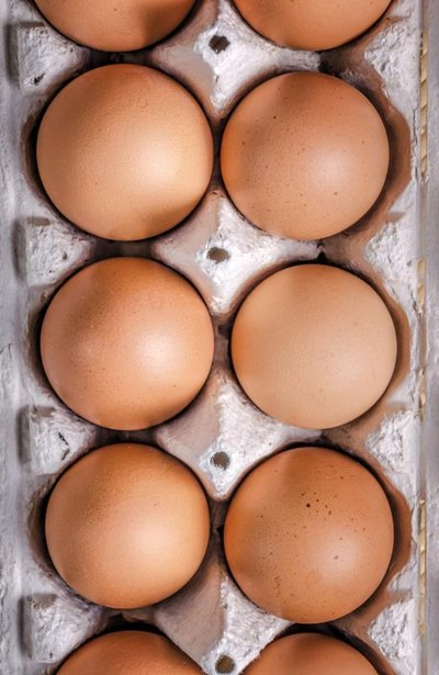 Benefits of Egg White for the Muscles
