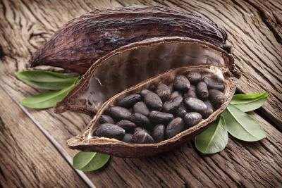 What Is Raw Cacao Powder?