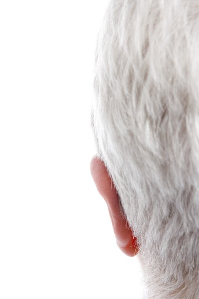 Can Vitamin B Stop Hair From Growing Gray?