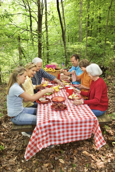 A picnic in the park planned by teens can be a neat bonding experience.