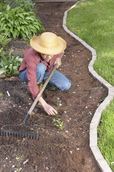 Gardening is light physical activity.