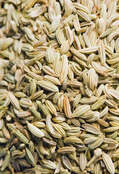 Fennel Seeds & Weight Loss