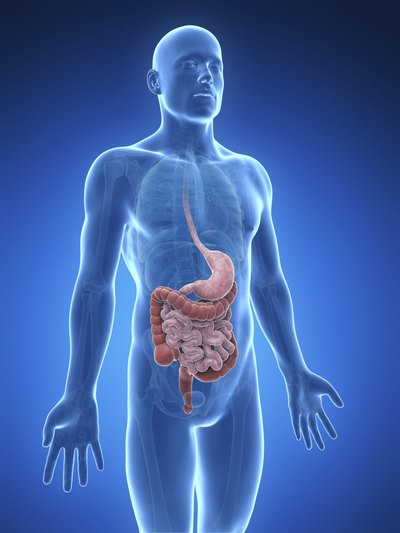 Blocked Duodenum Symptoms