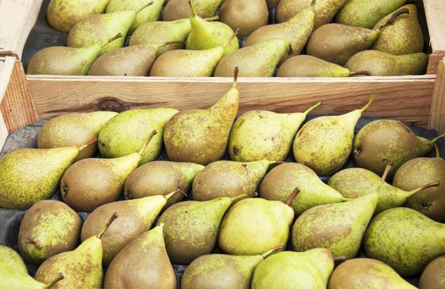 Can Pears Help You Lose Weight?