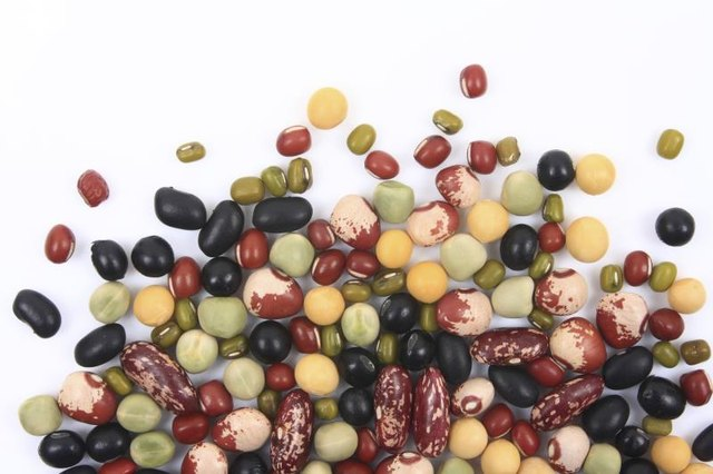 What Contains More Iron: Beans, Vegetables, Fruit or Milk?