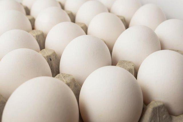 Can Humans Digest Raw Eggs?
