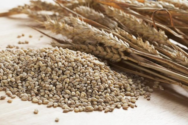 Is Pearl Barley More Nutritious Than Rice?