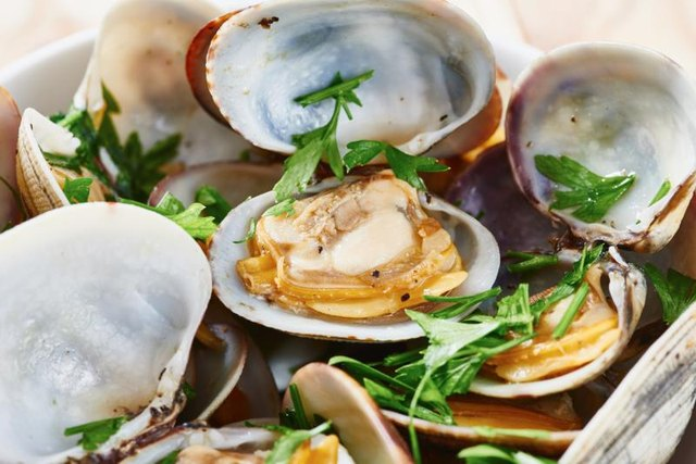 Is There High Cholesterol in Steamed Clams?