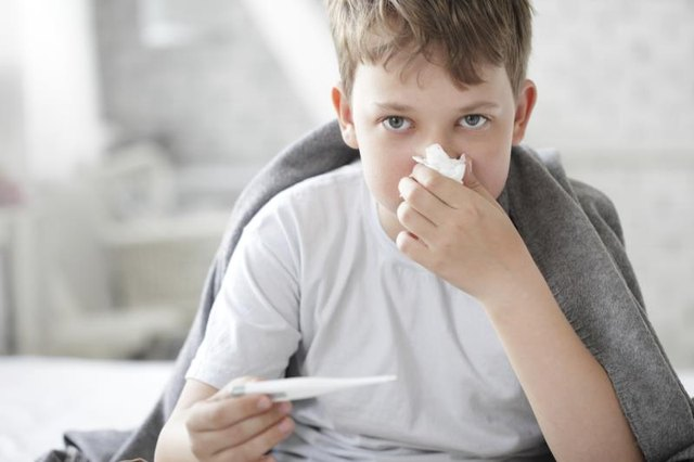What Are the Pathogens That Cause Influenza?