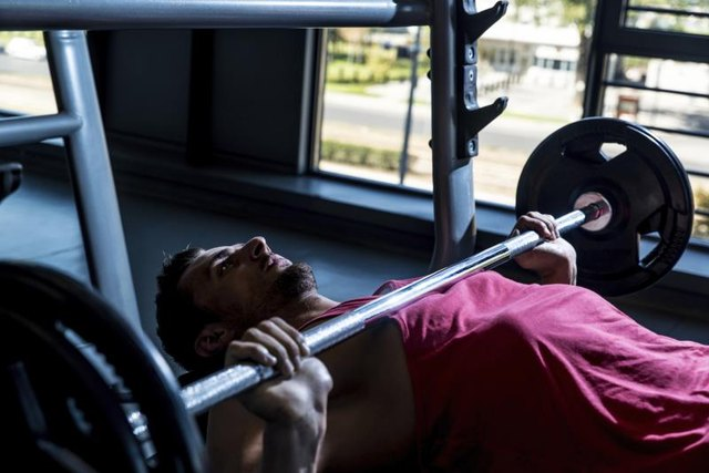 Will Doing Dips Help Your Bench Press?