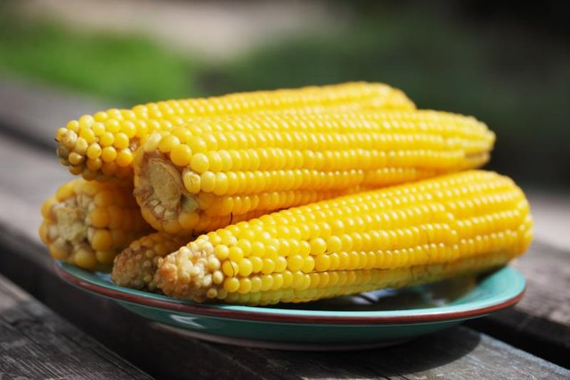 Is Corn High in Protein?