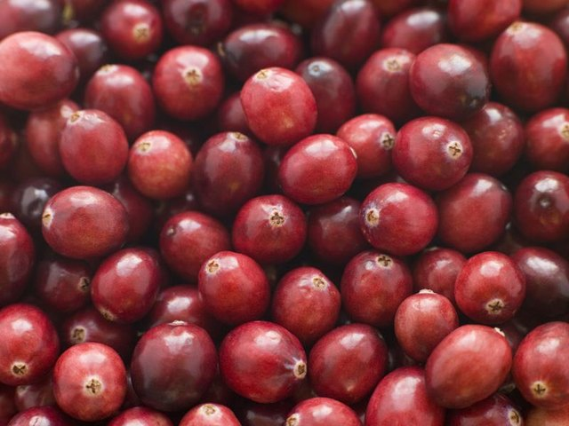 Is Cranberry Juice Good for Your Kidneys?