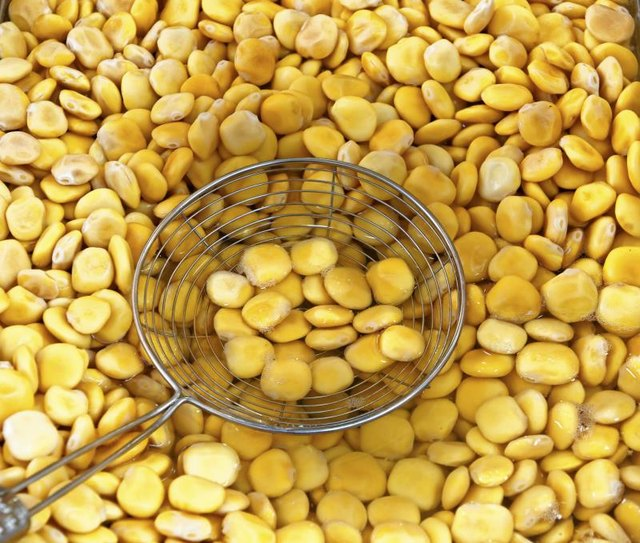 The Nutrition in Lupine Seeds