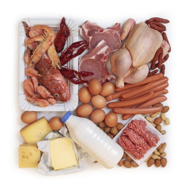 How to Improve Protein Digestibility