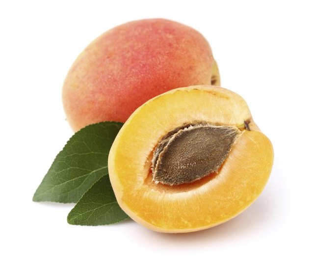 Apricot Seeds Nutrition