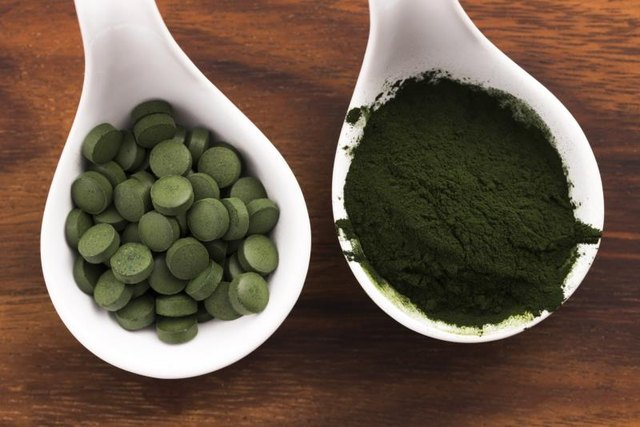 Harmful Effects of Blue-Green Algae