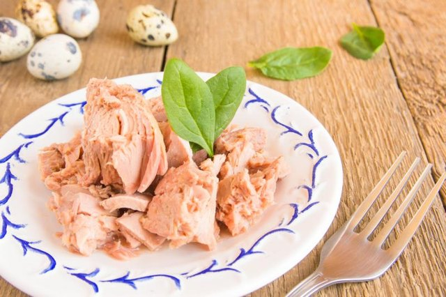 How Much Tuna Can You Eat During Pregnancy?