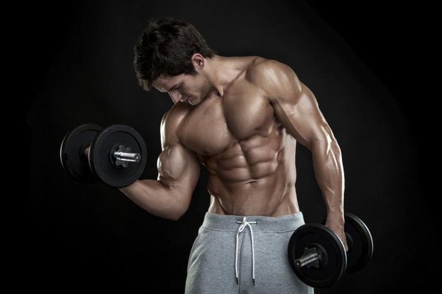 Effects of Steroids on the Body