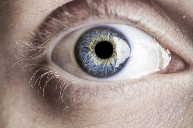 How to Reverse Cataracts With Nutrition