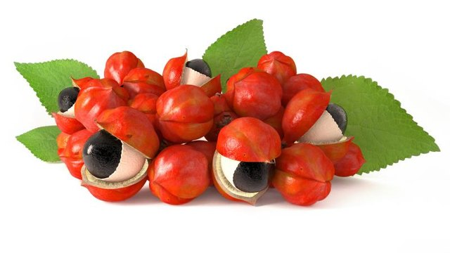 What Are the Benefits of Guarana?