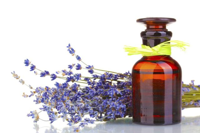 Lavender Oil & Headaches