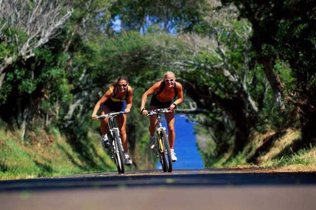 What Parts of the Body Does Bicycling Work?