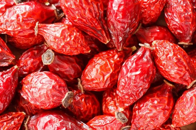 Rose Hips Benefits