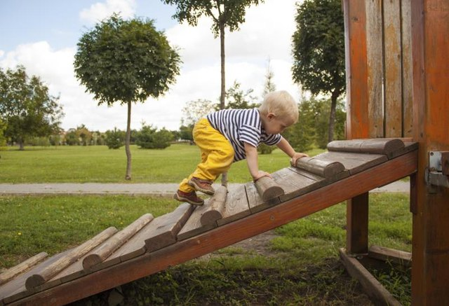 Developmental Milestones Related to Climbing