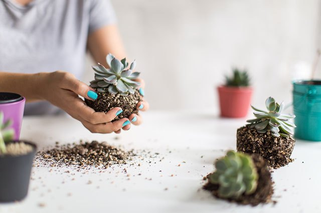 Give your old dirt a new life.