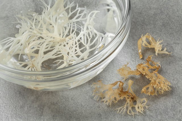 You can add Irish moss to any dish for an easy nutritional boost.