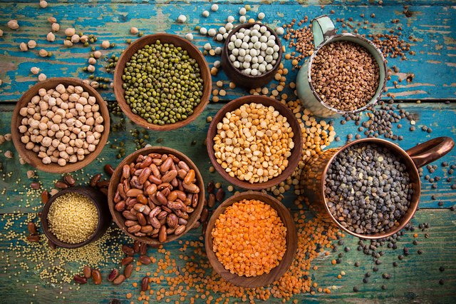 Legumes are a great alternative source of protein.