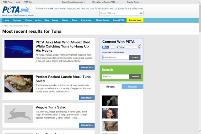 8 Reasons Not to Eat Tuna
