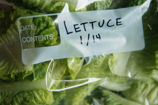 How to Freeze Lettuce Leaves
