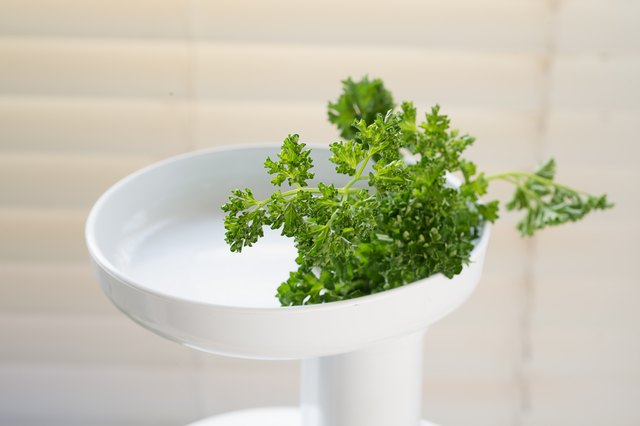 How to Make Parsley Juice