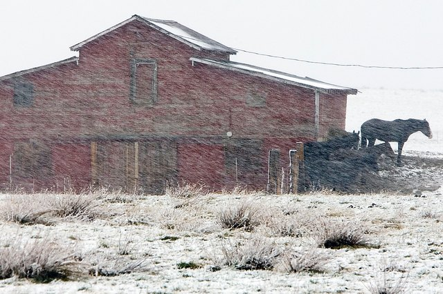 Six of Montana's 14 cold weather-related deaths in 2014 were elderly who got caught the cold.