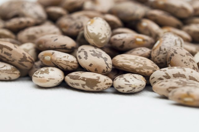 The Best Beans for Protein