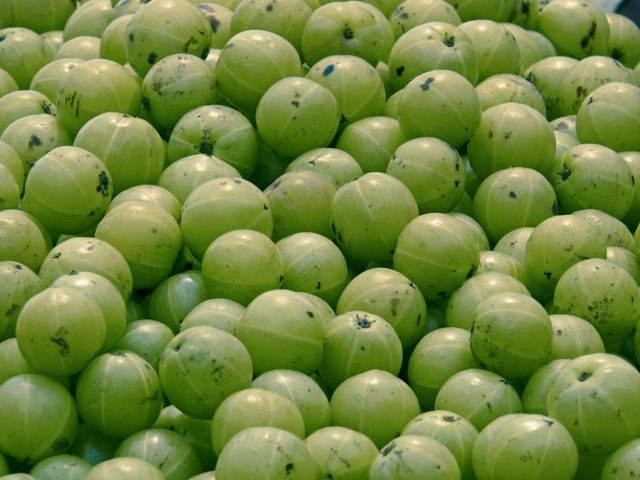 How to Eat Amla During Pregnancy