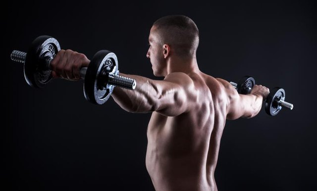More defined rear delts make your back and triceps appear larger