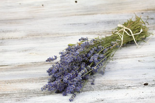 Dried lavender offers a soothing scent.