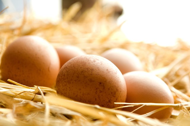 A balanced diet including eggs can prevent gray hair.