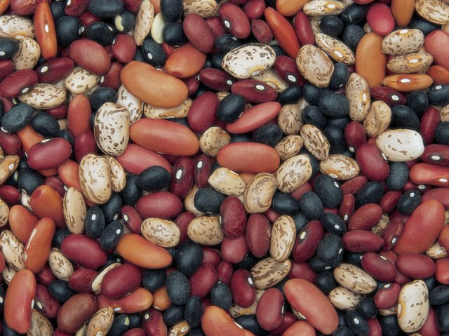 Beans can replenish iron, folate and B vitamin supplies.