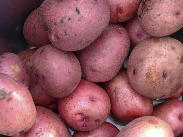 How to Cook Oven Roasted Red Skin Potatoes