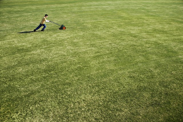 Activities like mowing the lawn are great forms of mild exercise.