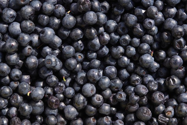 Berries are packed with nutrients and vitamins.