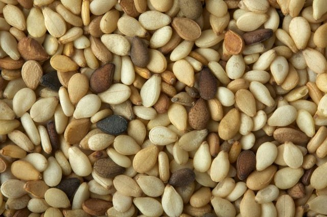 Are Sesame Seeds Good Sources of Protein?