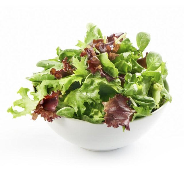Mixed Green Salad.